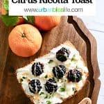 Blackberry citrus ricotta toast
