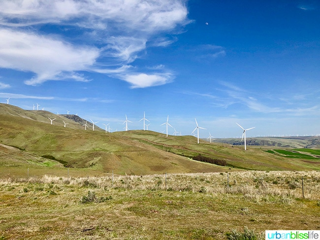 Goldendale, Washington wind farm
