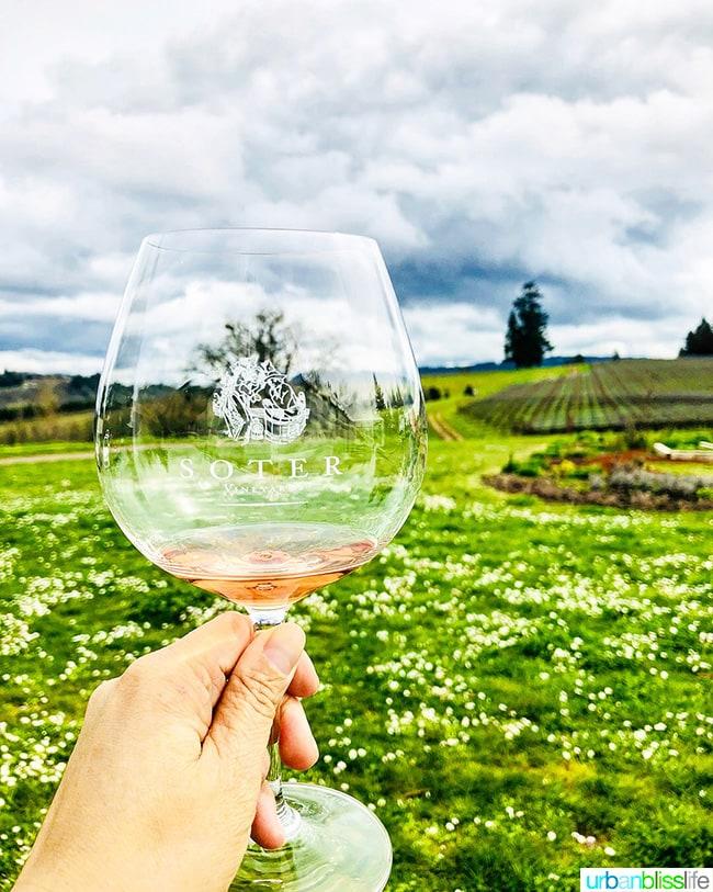 Soter wines North Valley Rosé wine 2017