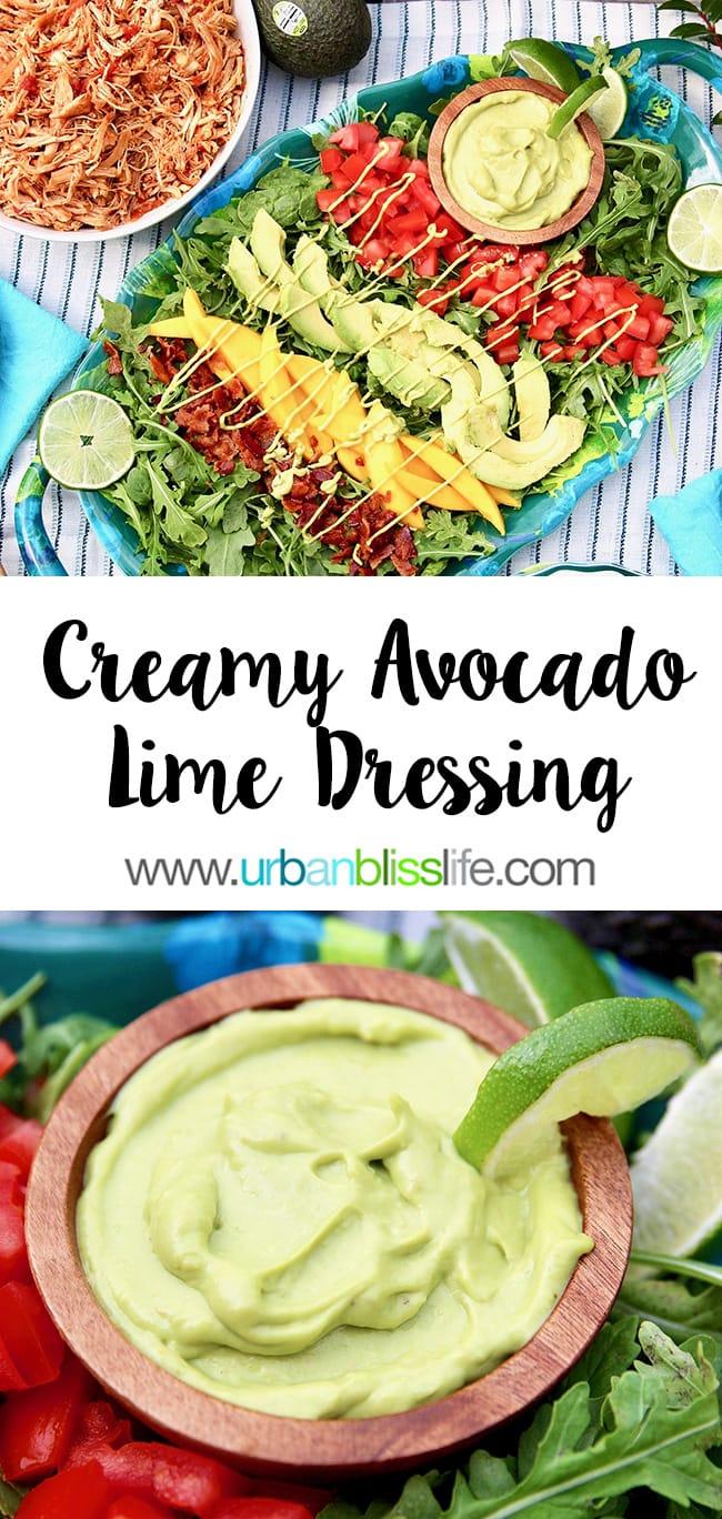 Creamy Avocado Lime Dressing & Dip on UrbanBlissLife.com