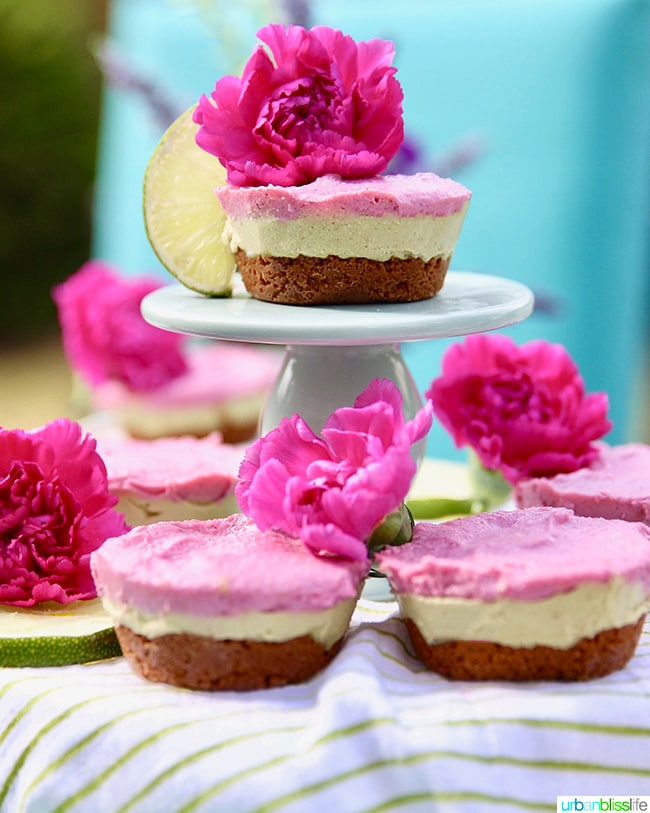 avocado, lime and pink pitaya mini vegan cheesecakes