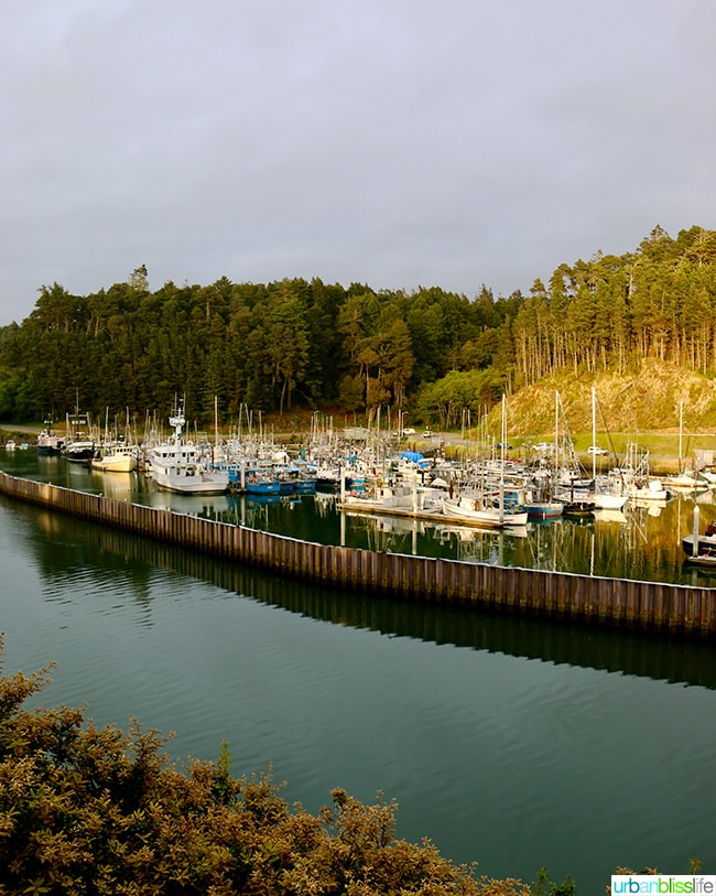 Noyo Harbor, Fort Bragg, California