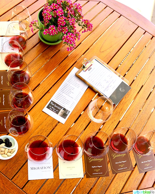 Alexander Valley Wineries: Goldeneye wine flight