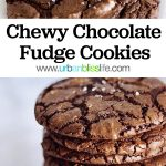 Chewy Chocolate Fudge Cookies