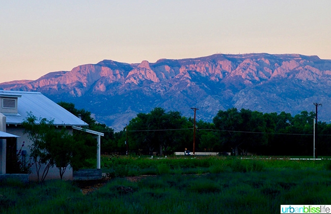 sandia mountains at sunset Los Poblanos Inn Albuquerque New Mexico