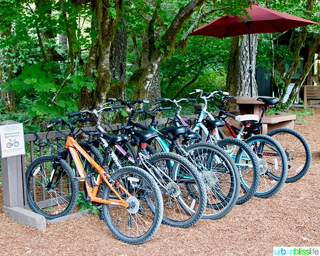 silver falls lodge bikes