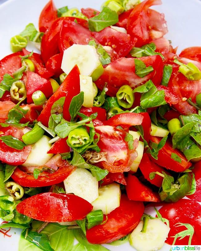salad olympos karpathos island greece