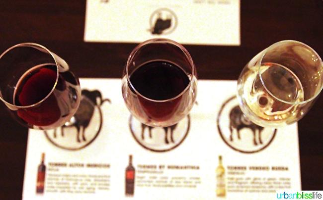 Spanish wine flight