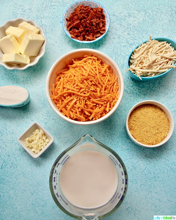 Dairy-Free-Mac-and-Cheese-Ingredients