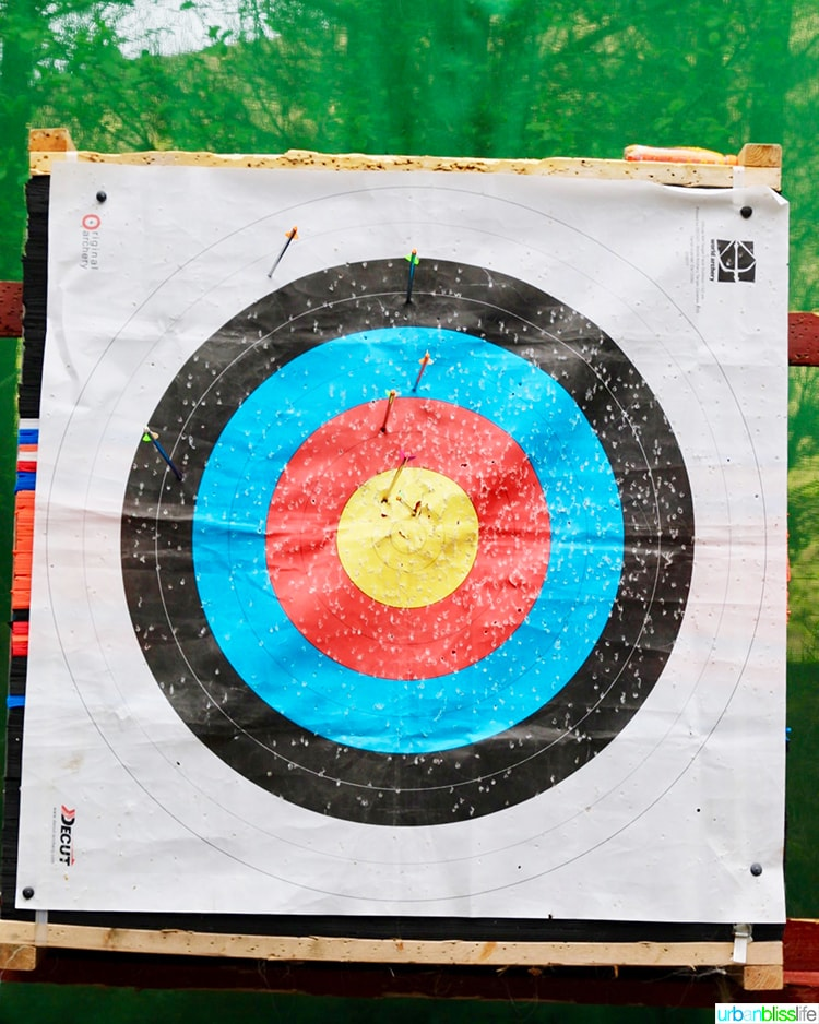 Delphi Mountain Resort Archery Target
