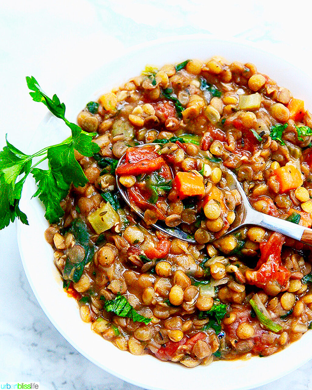 one bowl of Instant Pot Lentil Soup