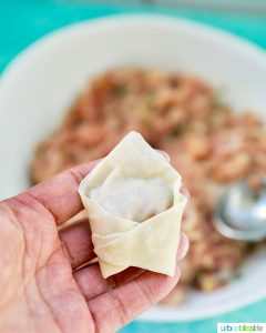 Pork and Shrimp Wonton single folded