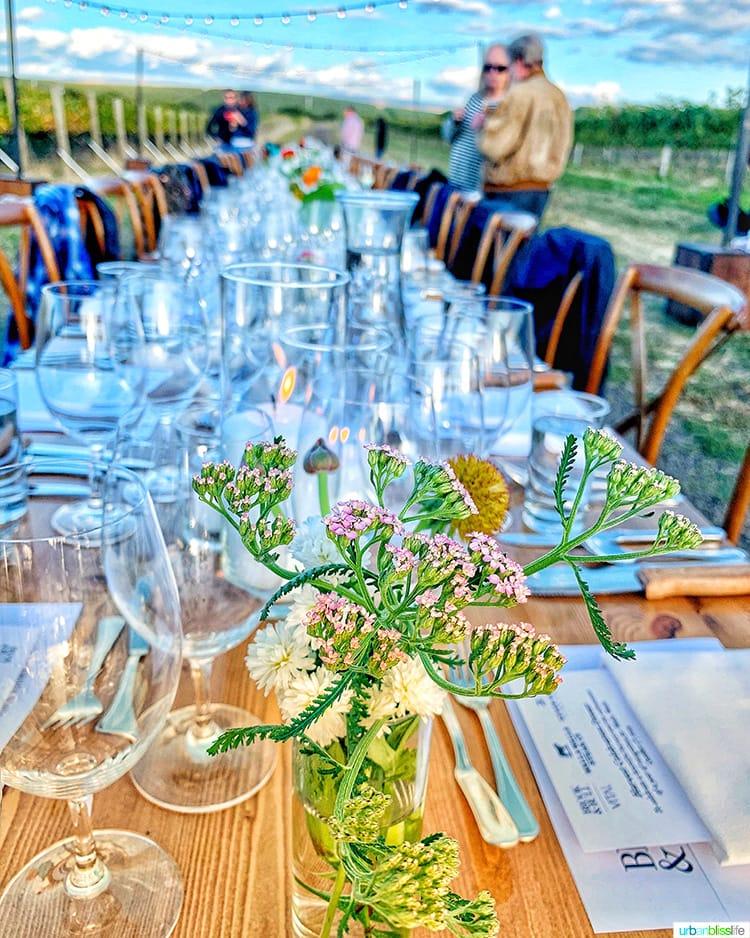 table setting at harvest celebration dinner walla walla vineyard