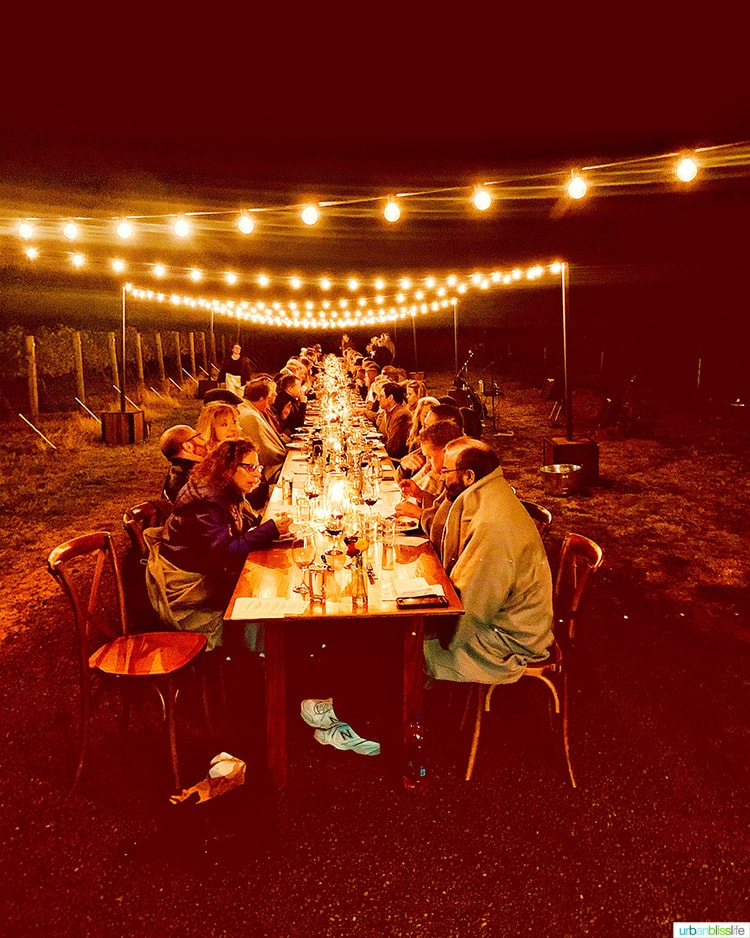 dark night at harvest celebration dinner walla walla vineyard