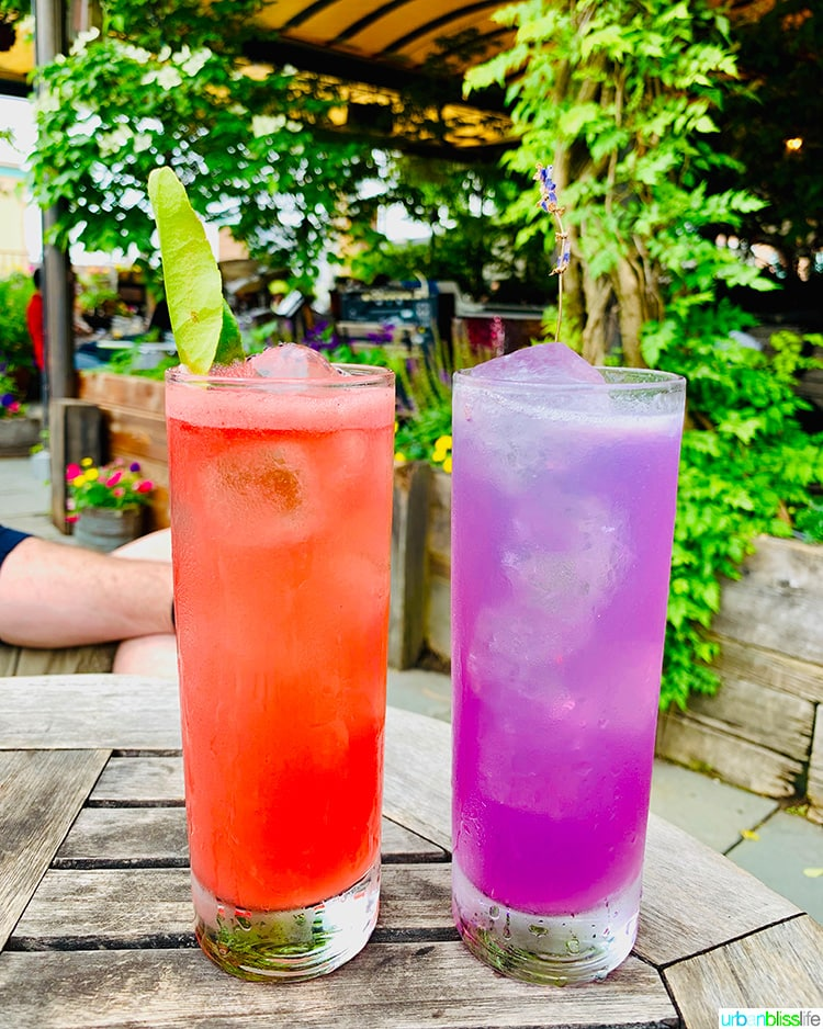Colorful cocktails at Gallow Green in NYC