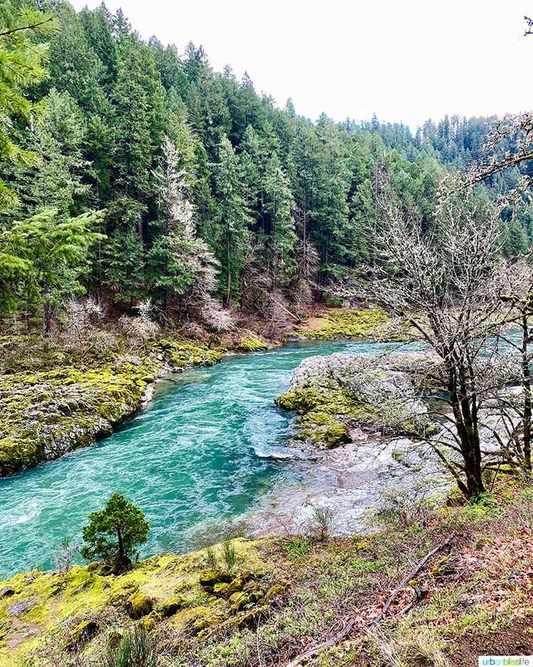 colorful Umpqua River