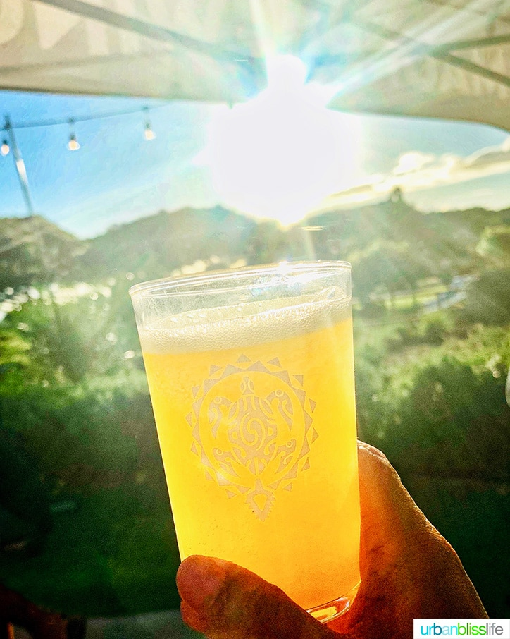 Best places to eat in Maui: beer in sunshine at Maui Brewing