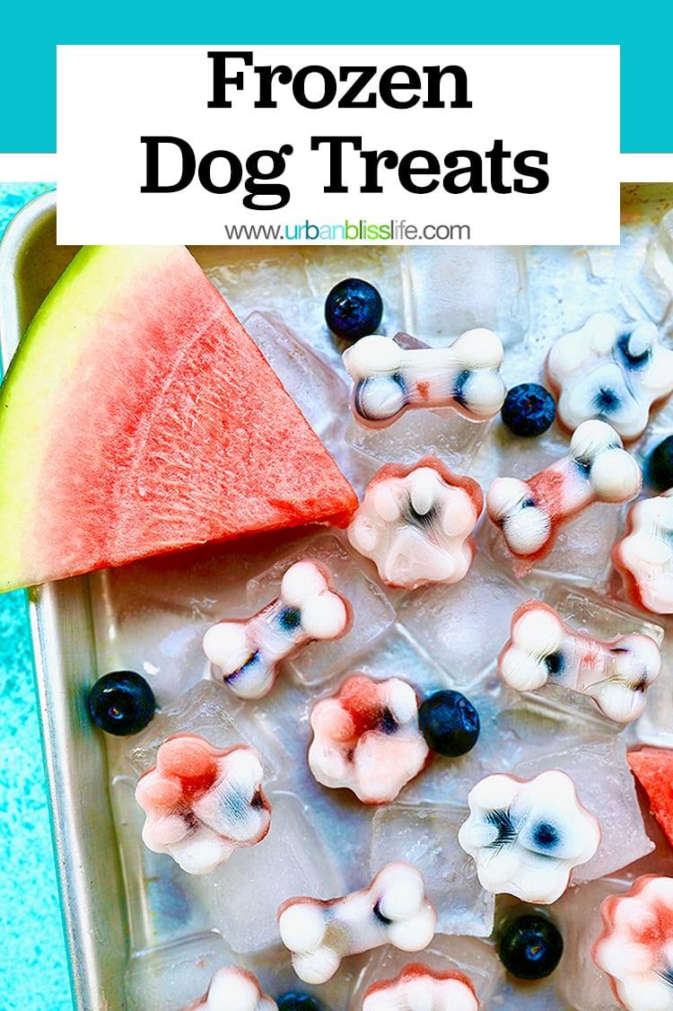 Frozen dog treats: watermelon, blueberry, yogurt dog treats