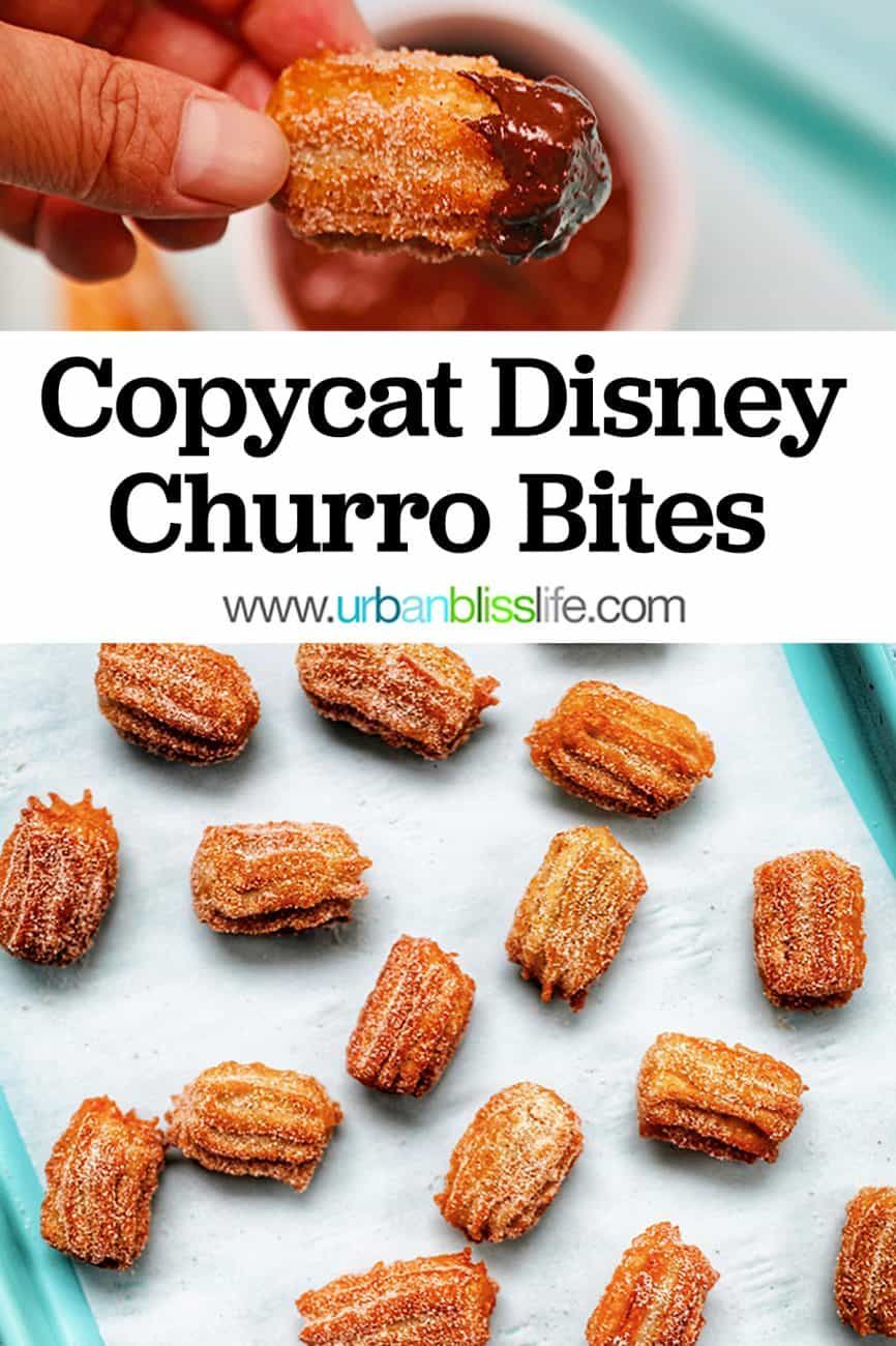 main graphic for cinnamon sugar churros