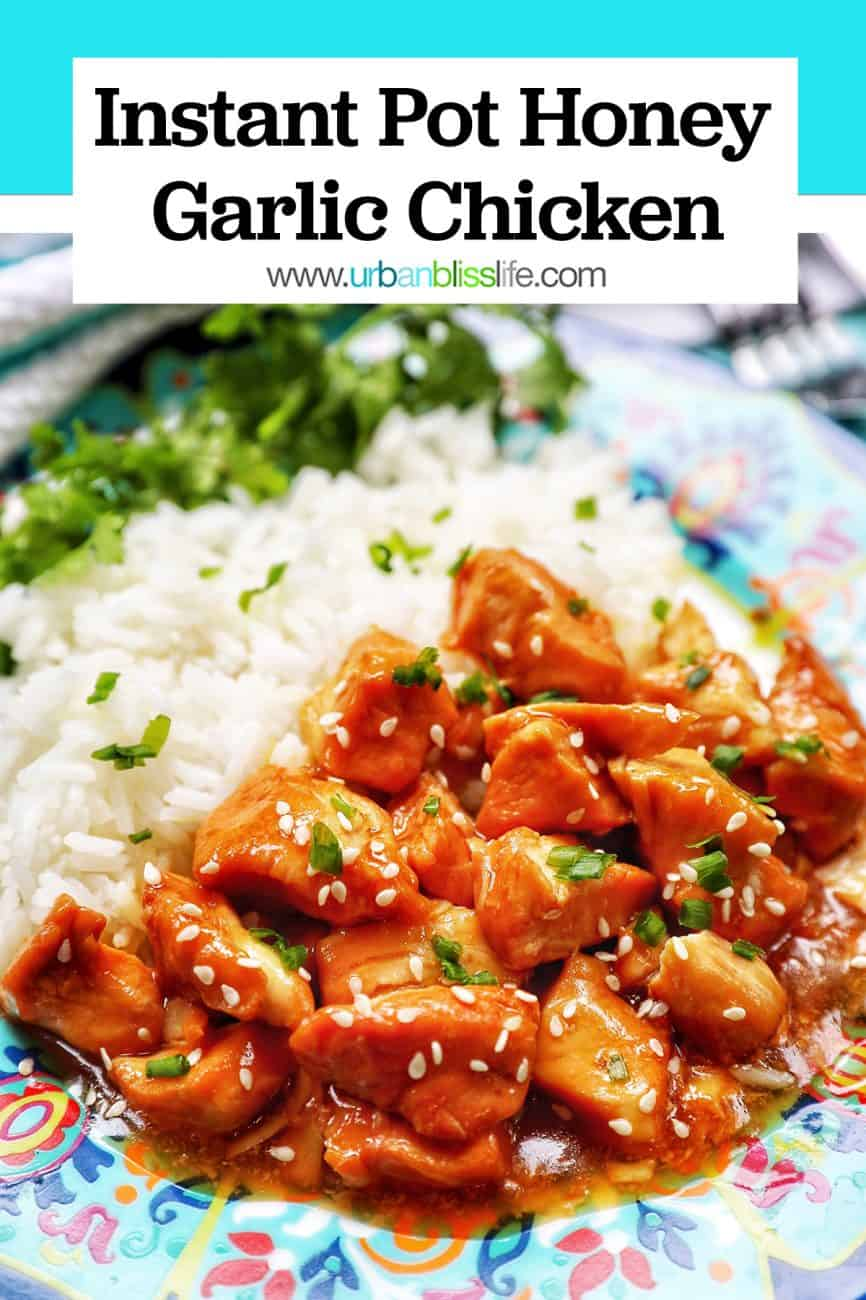 image of Instant Pot Honey Garlic Chicken with title text