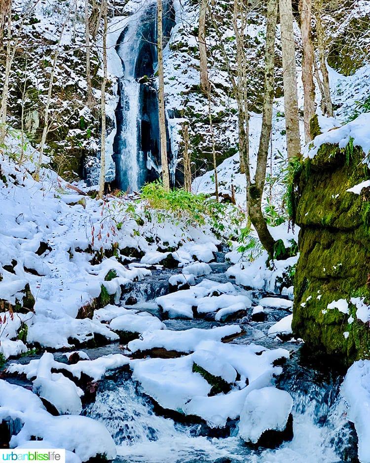 beautiful Oirase Gorge in Aomori Prefecture Japan