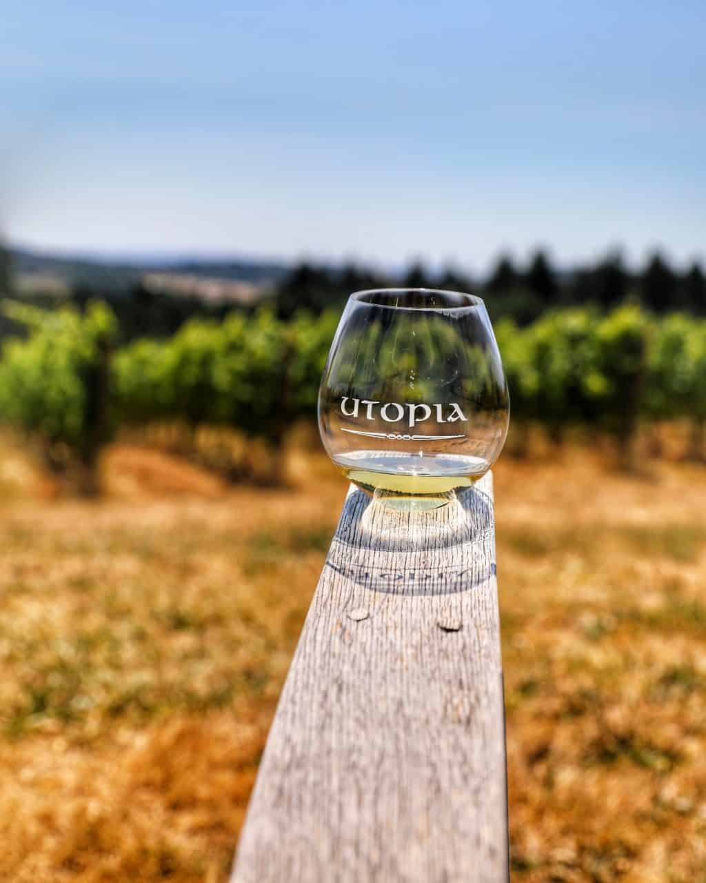 white wine at Utopia Winery with vineyard background