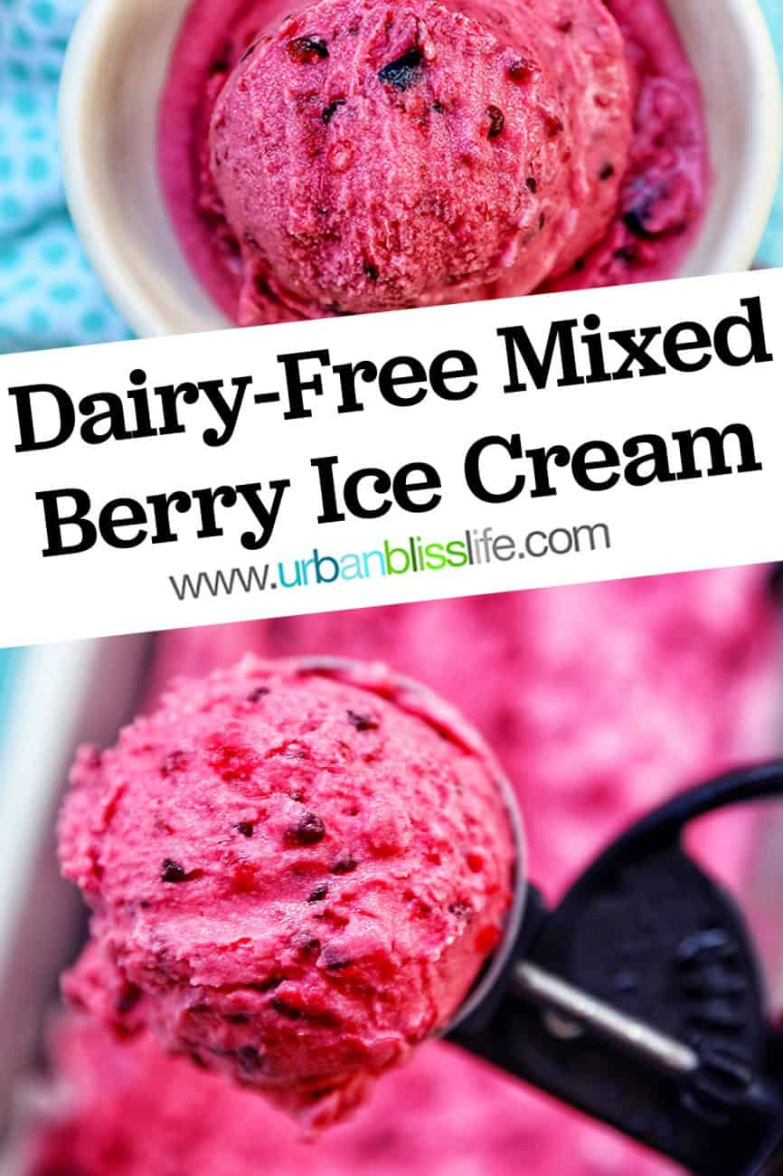main graphic of Dairy-Free Mixed Berry Ice Cream