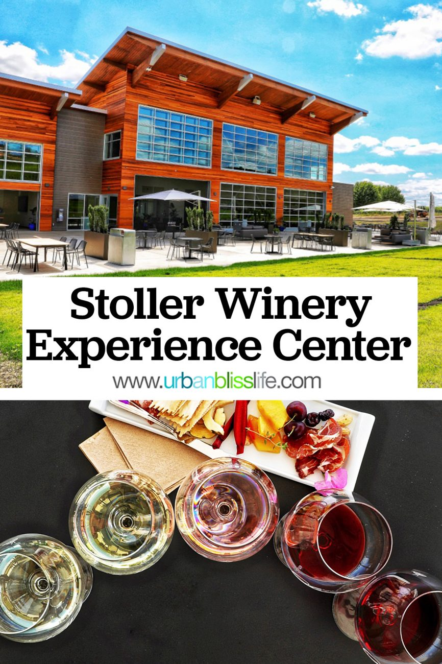 main graphic for Stoller Experience Center