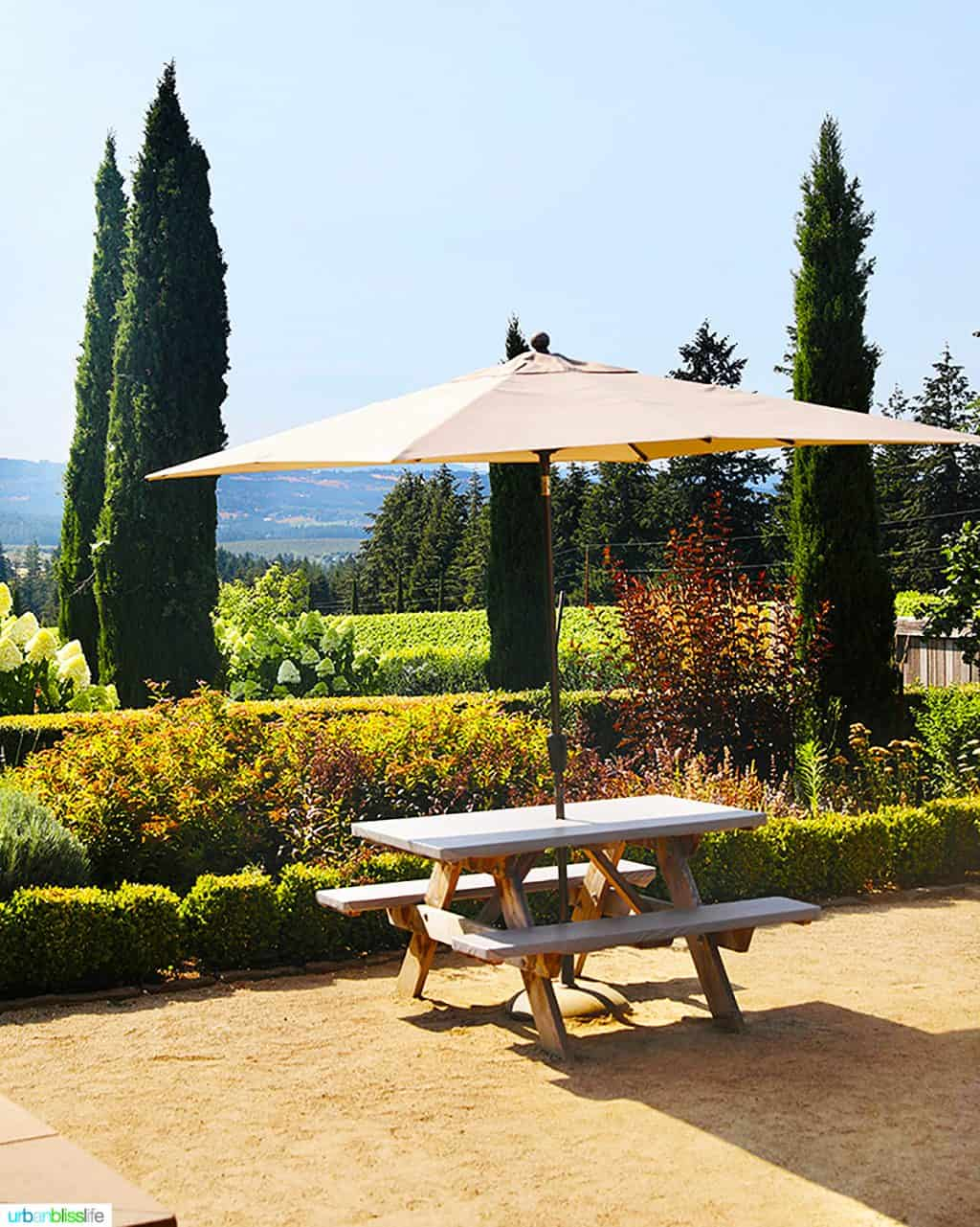 outdoor table for wine tasting at Alloro Vineyards