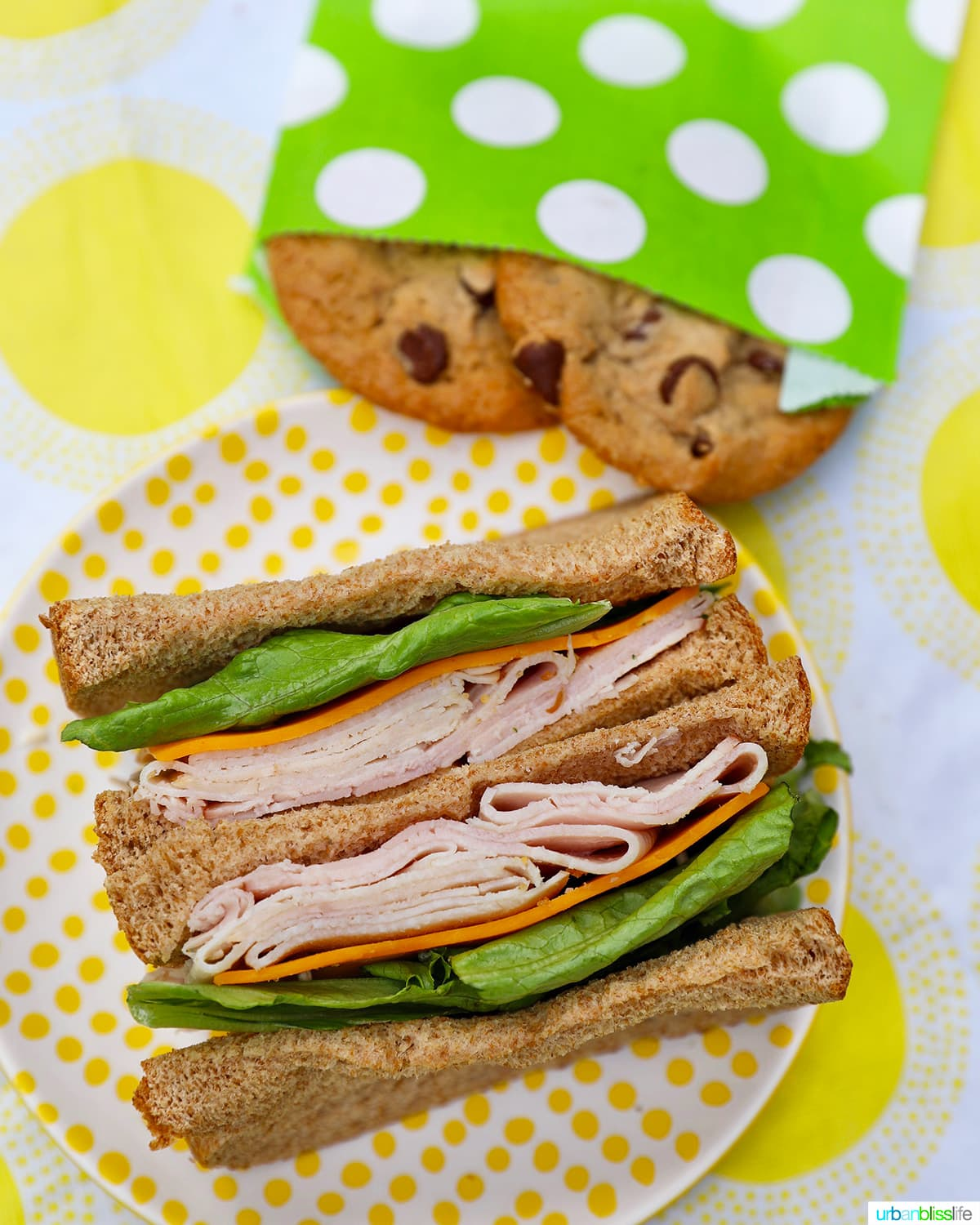 sandwich for healthy school lunches