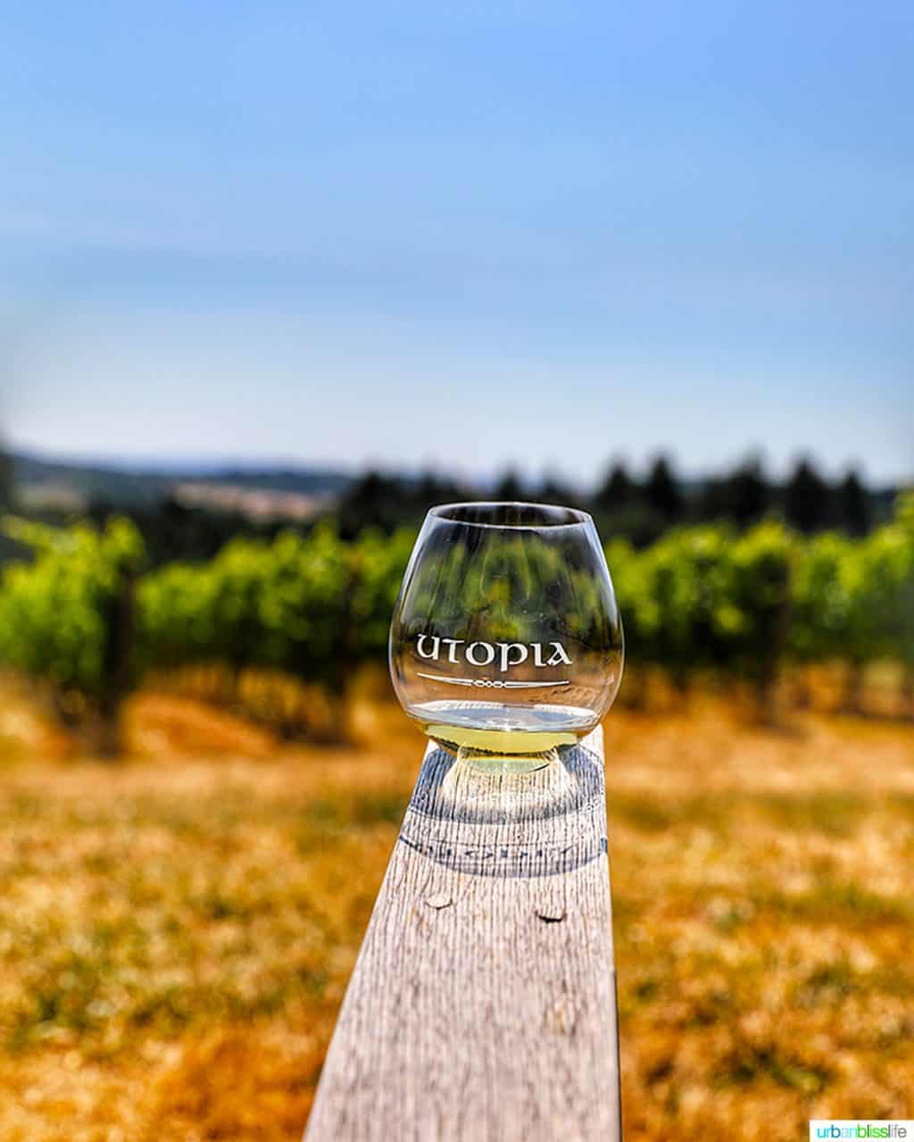 glass of Chardonnay at Utopia Vineyard