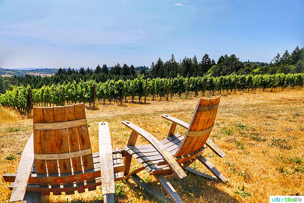 Utopia Vineyard adirondack chairs facing vineyard