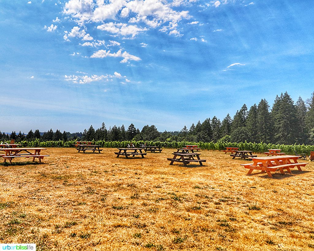 picnic tables at Utopia Vineyard
