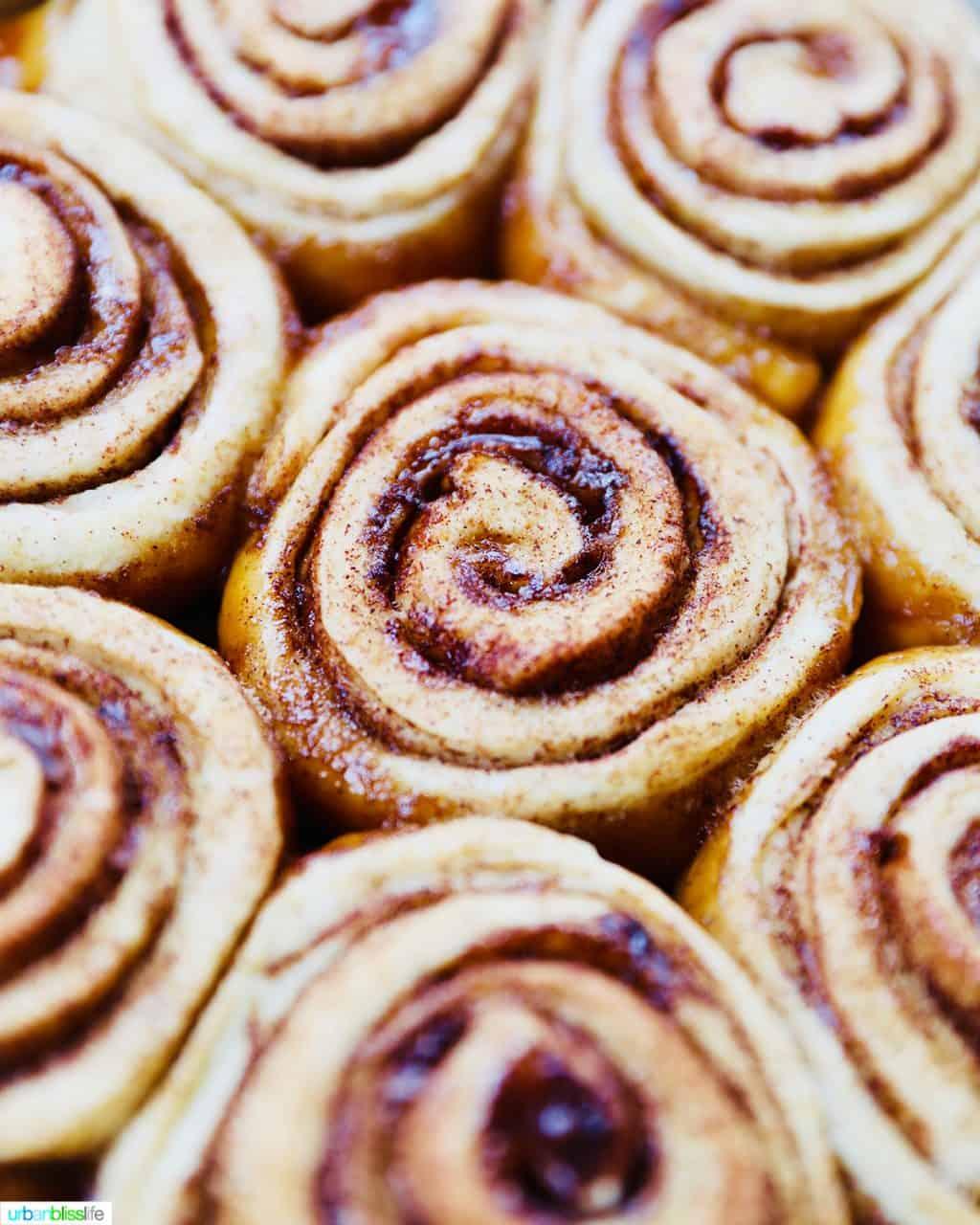 closeup of freshly baked orange cinnamon rolls without icing