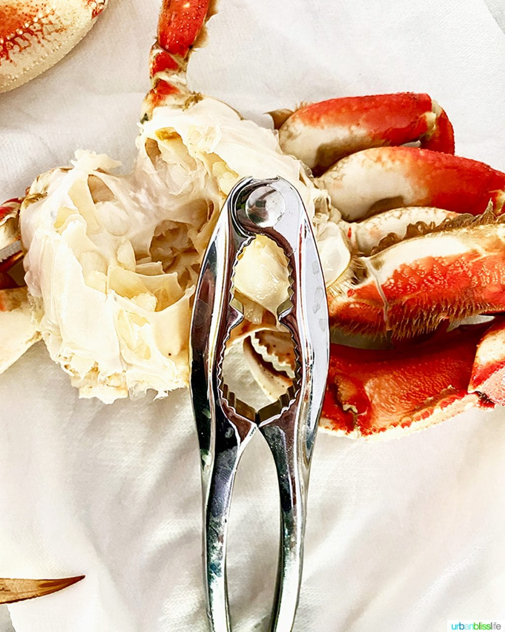 cracking crab with a seafood cracker