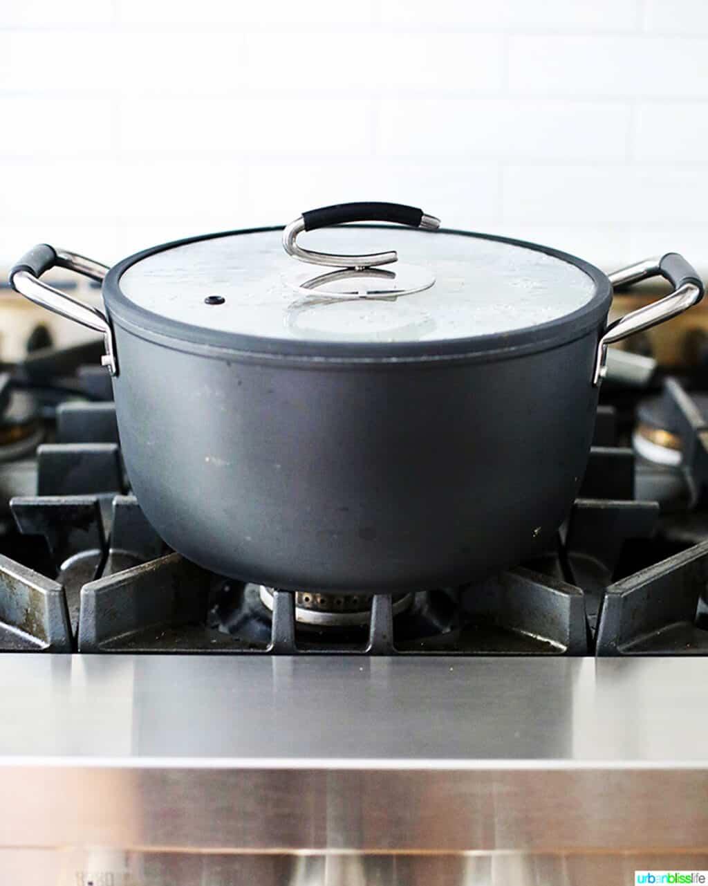 DaTerra Cucina 8Quart stockpot