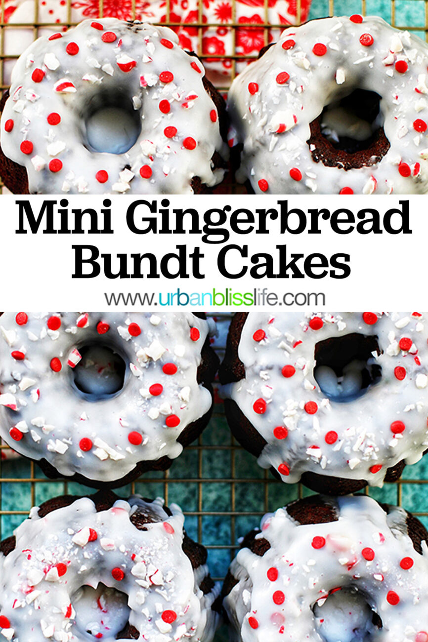 six mini gingerbread bundt cakes with title text