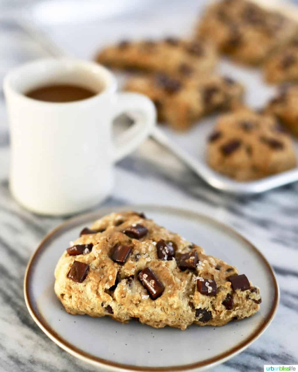 mocha chocolate chip scones with coffee cup