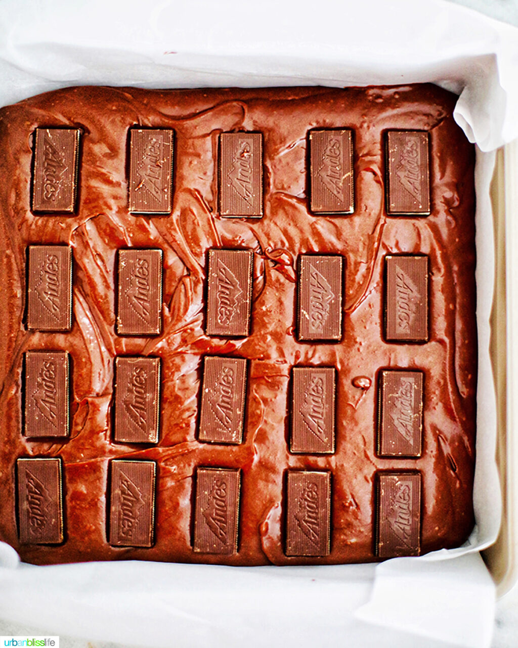 andes mints in brownie batter