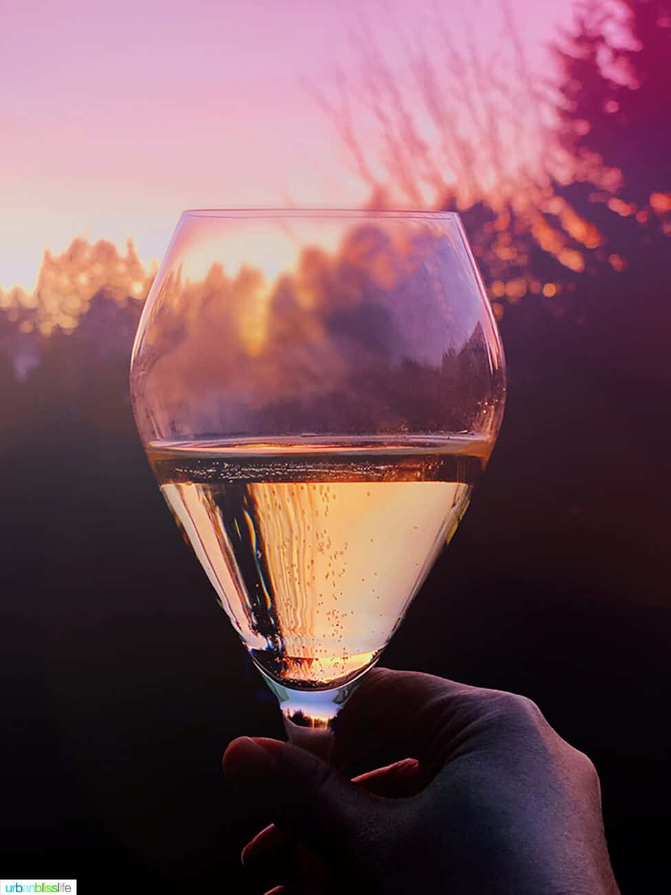 Champagne glass against sunset